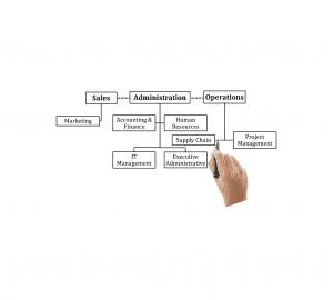 BGT Recruiting flow chart